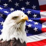 Figyelőben az amerikai Sasmadár